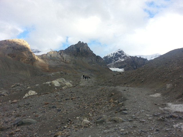 Looking up the trail to base of Athabasca Glacier